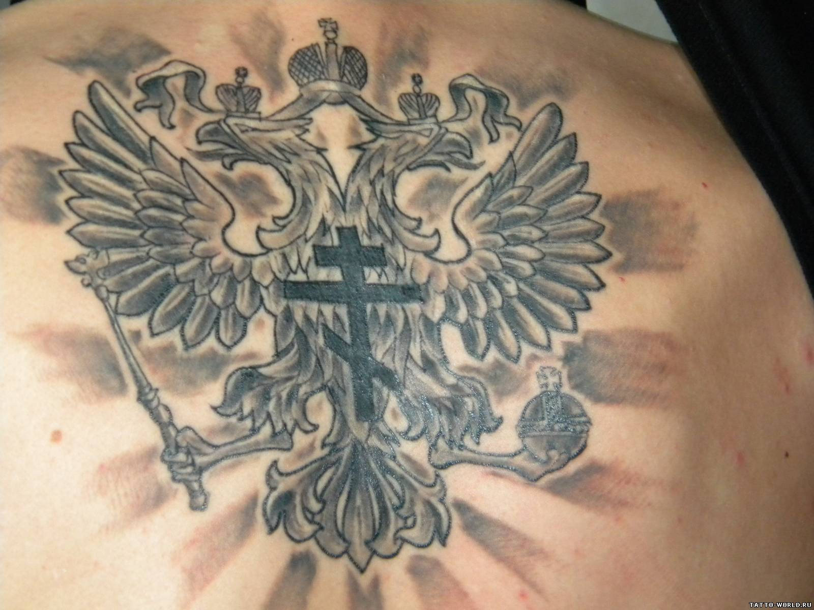 Немецкий орёл тату фото