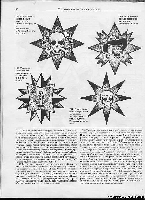 картинки тату зона